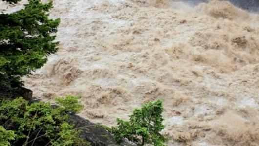 inundatii-cod-galben